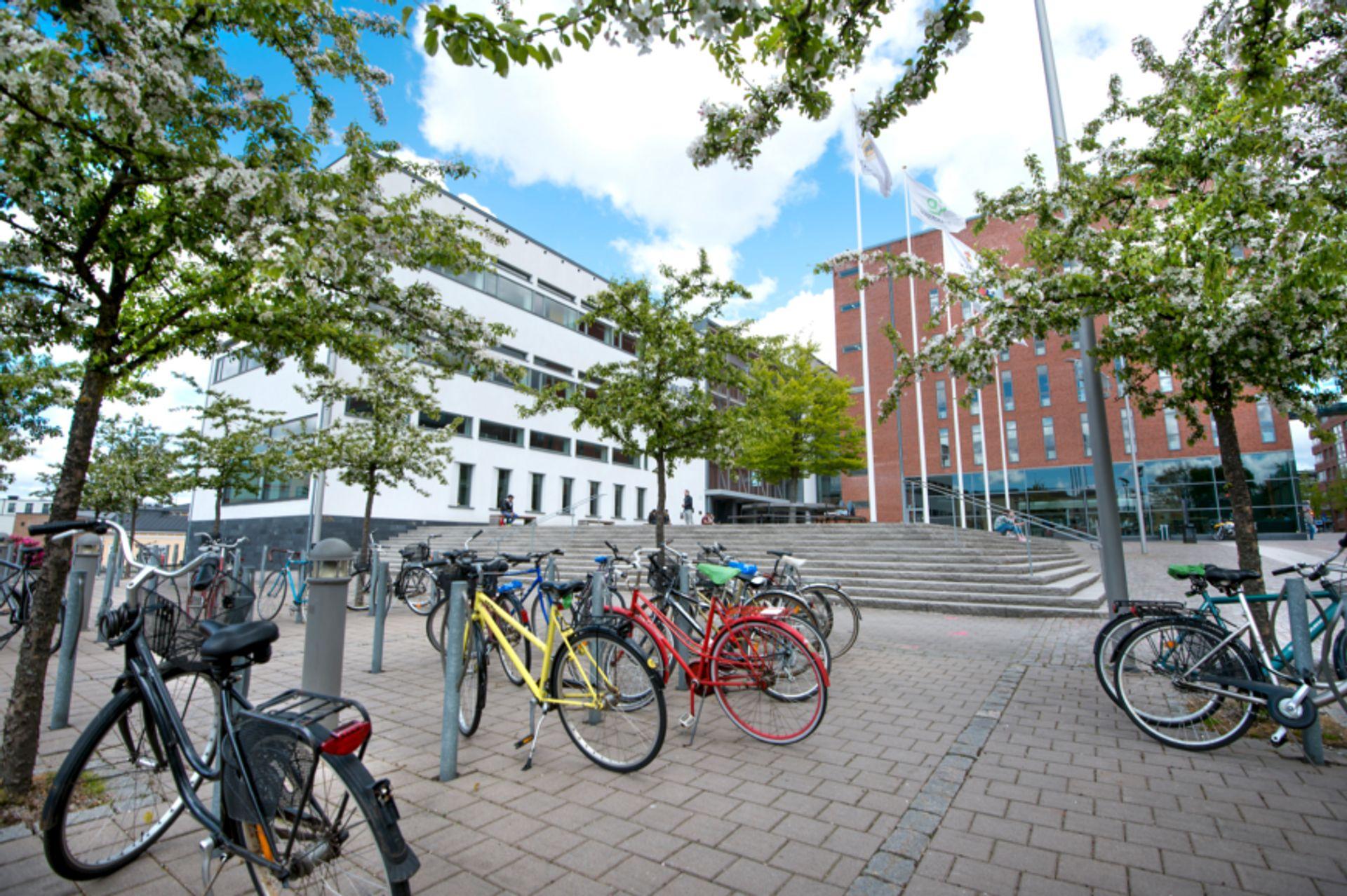 Högskolan Borås Building