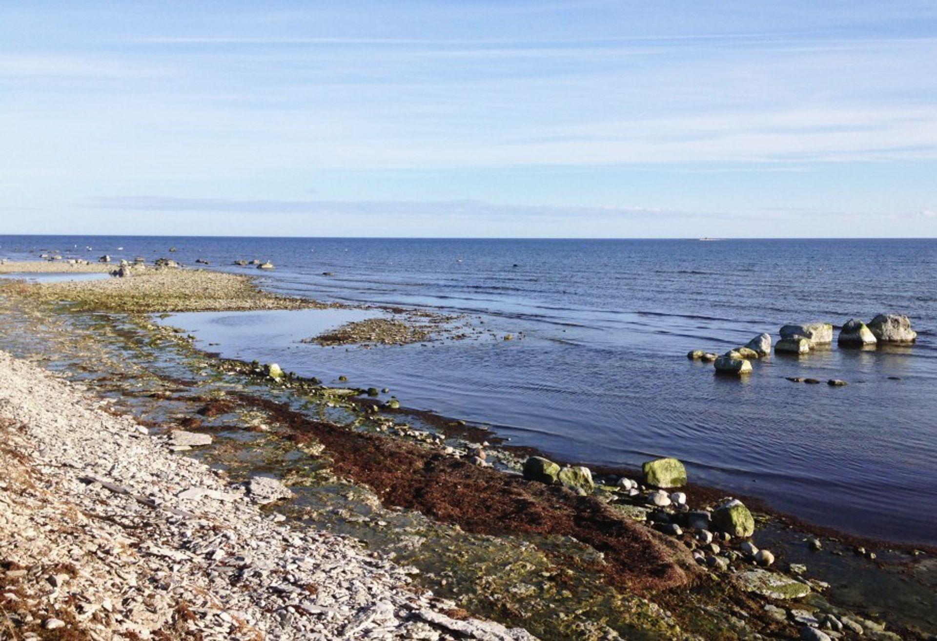 By the beach in Fårö, Gotland