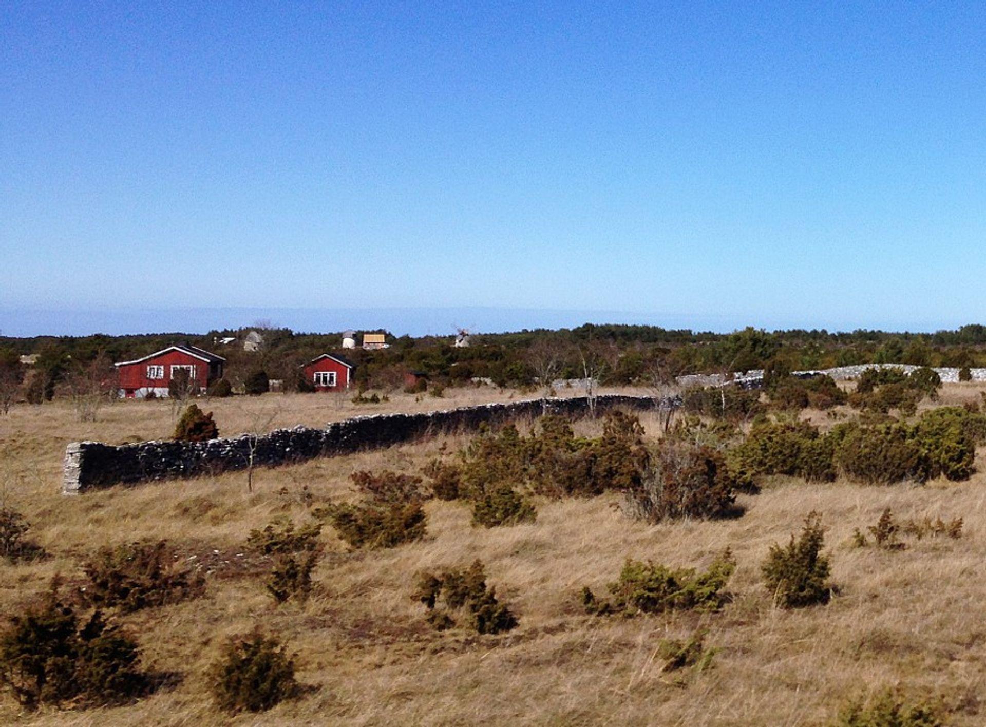 Fårö landscape