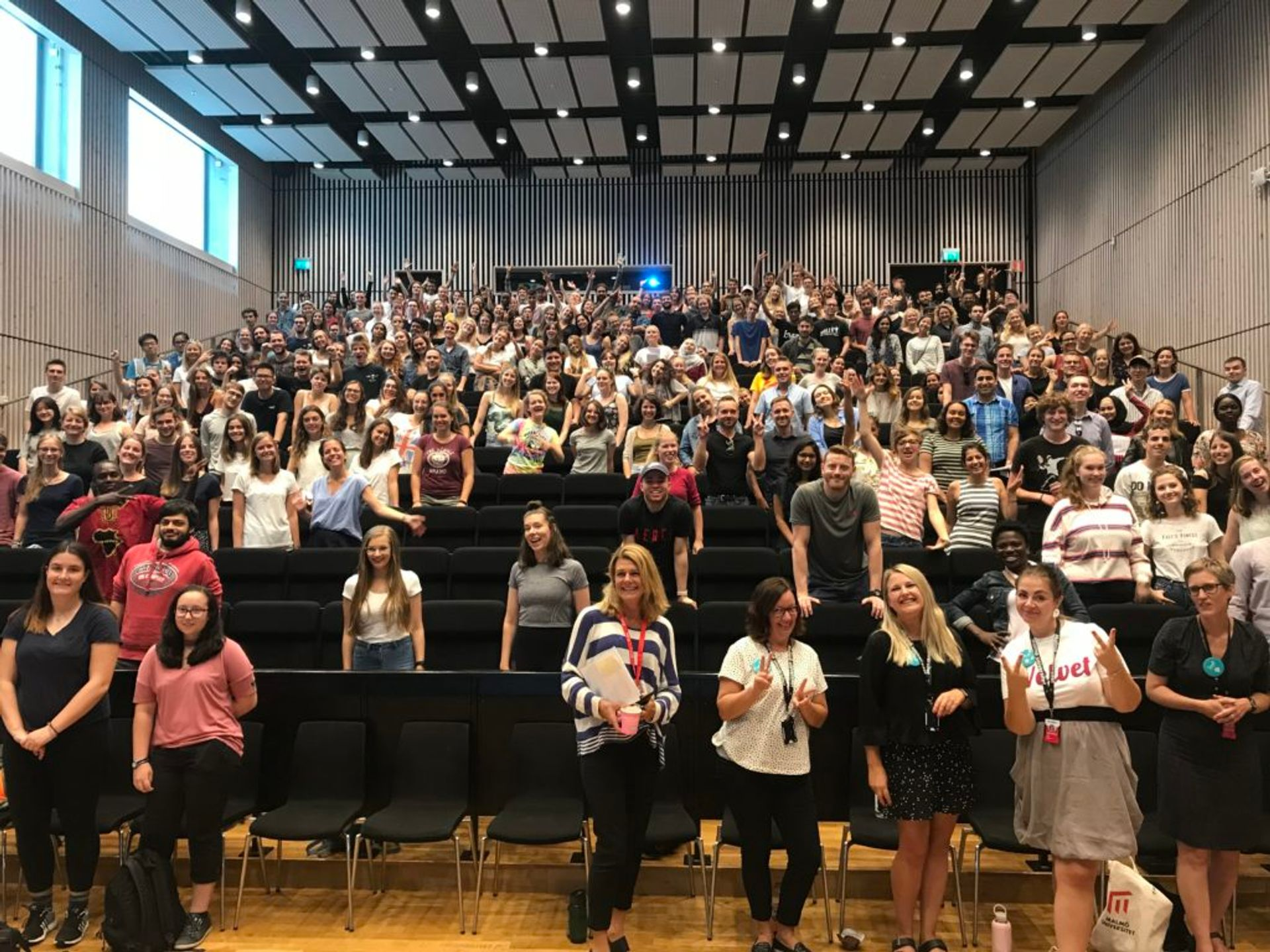 Malmö University students and their first impressions