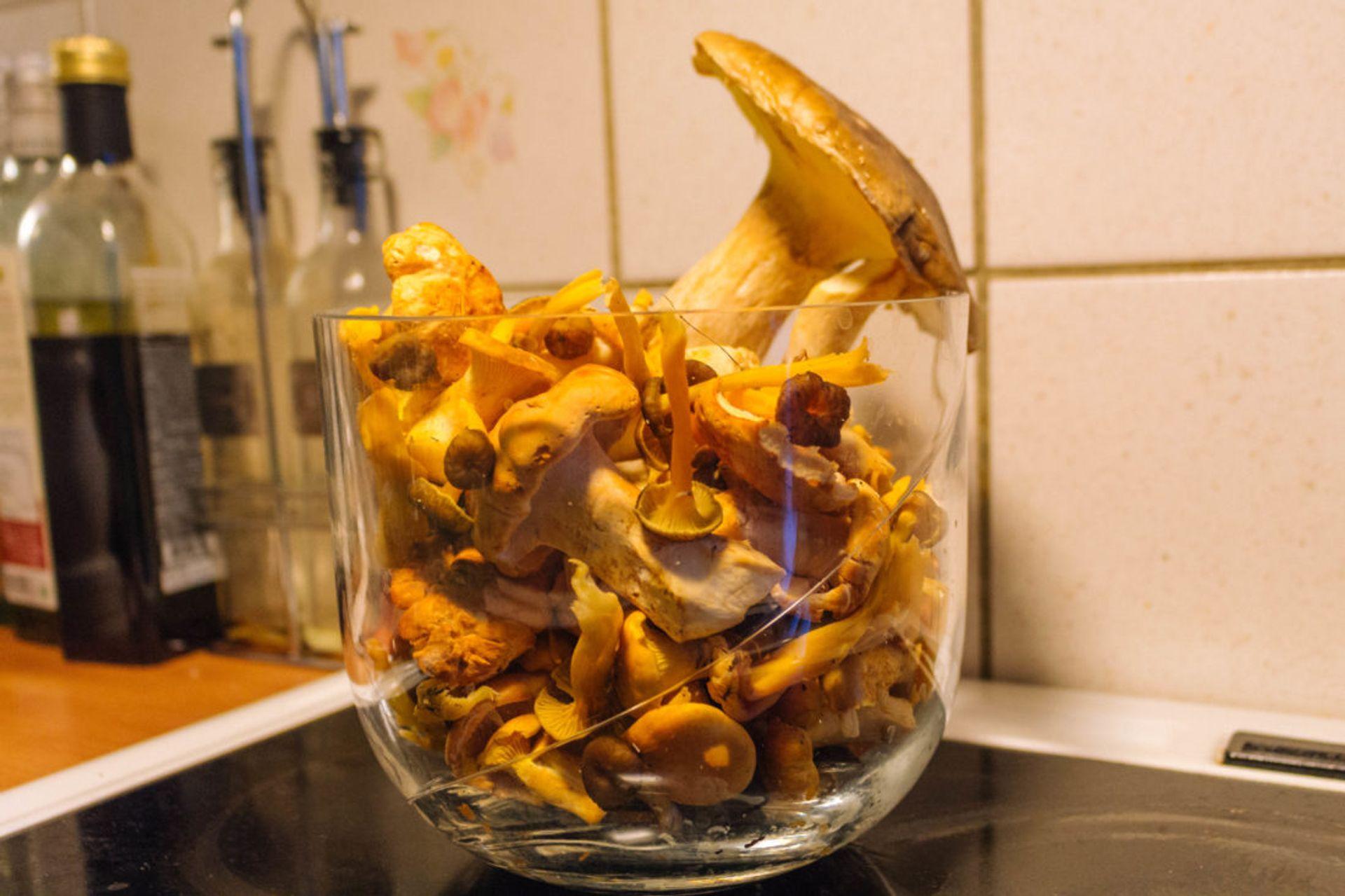 Bowl of mushrooms.