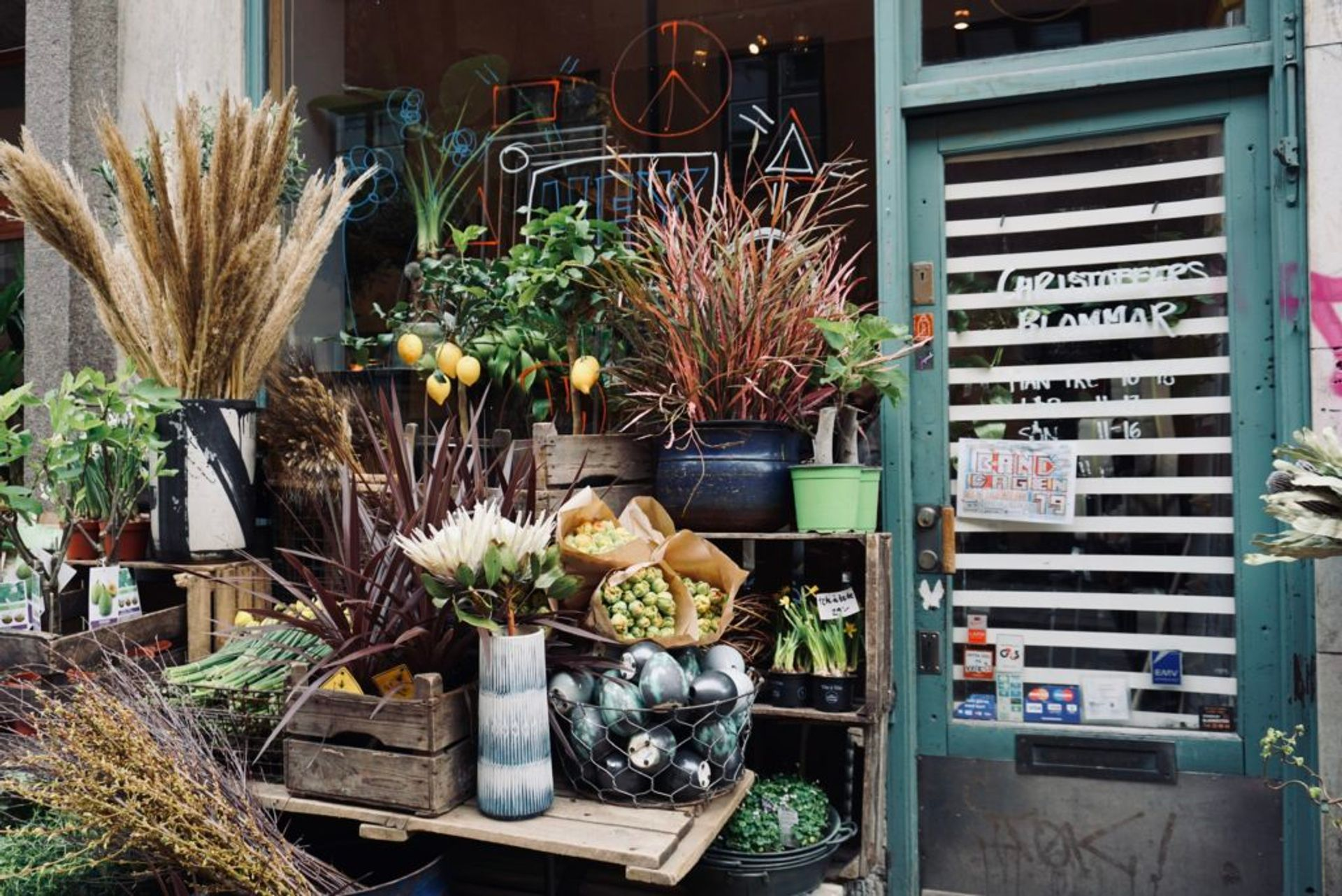 Flowers and plants outside of a flower shop.