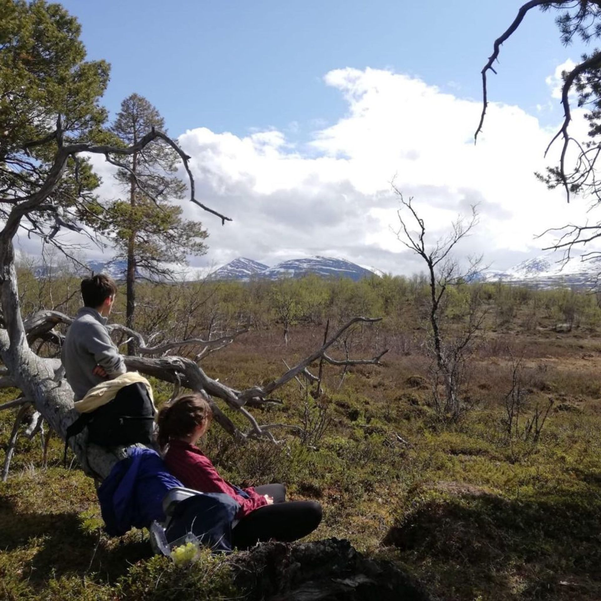 Two students sitting in a clearing looking at mountains.