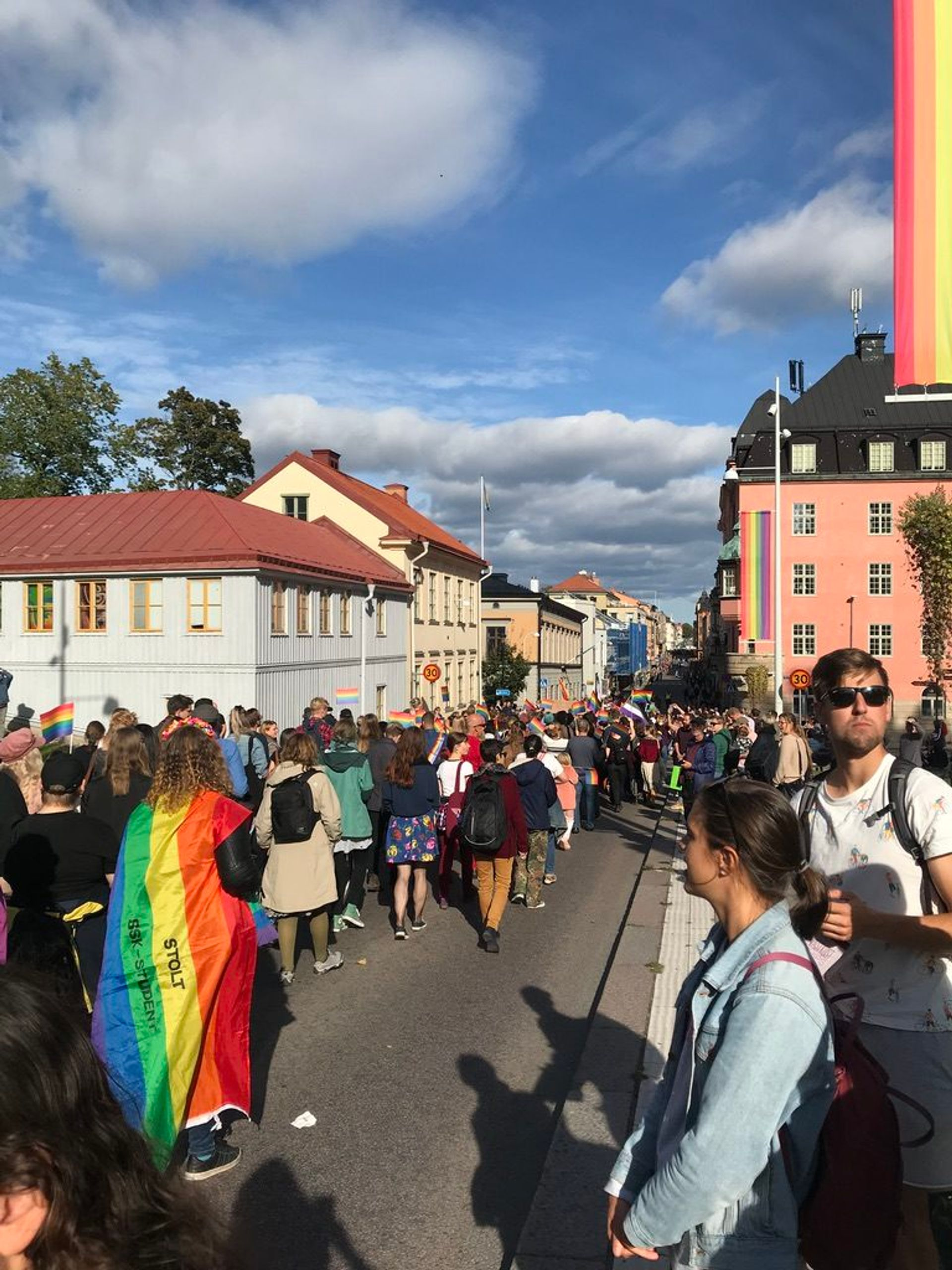 A large group of people walking down a street waving rainbow flags.