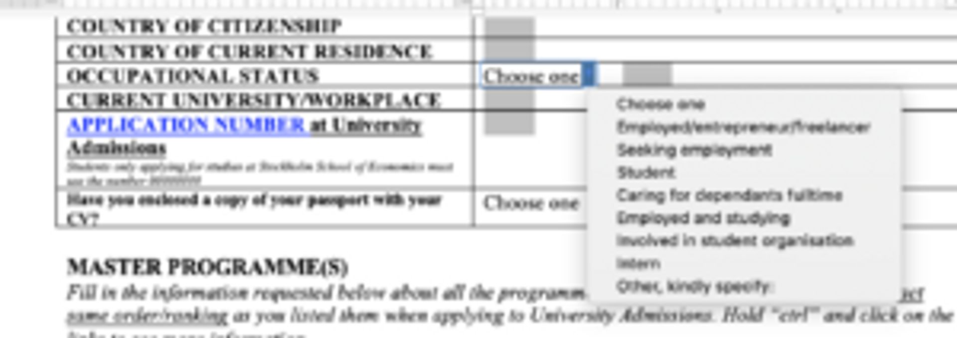 Screenshot of motivation letter form showing different options to fill out.