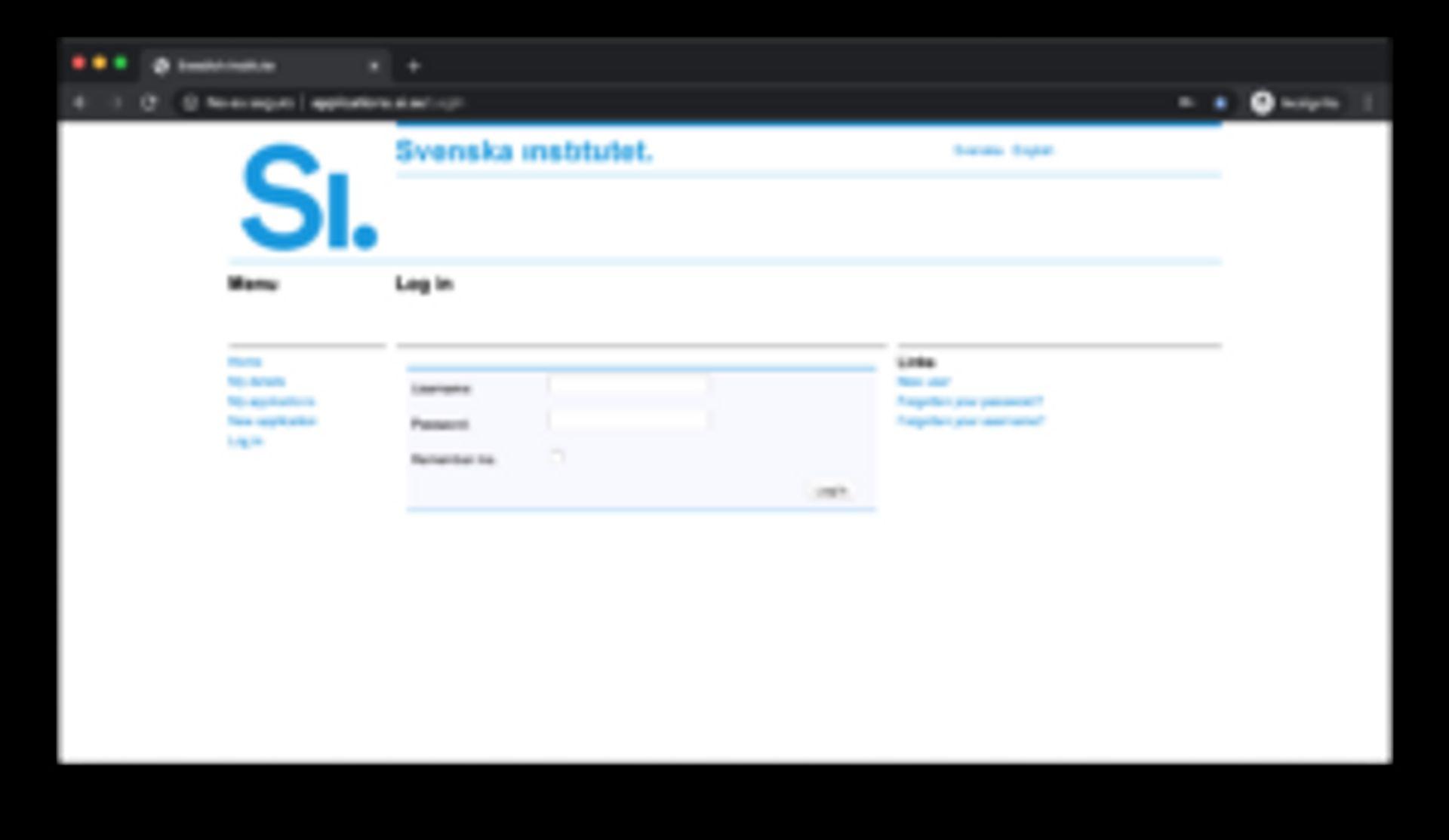 Screenshot of scholarship application portal.
