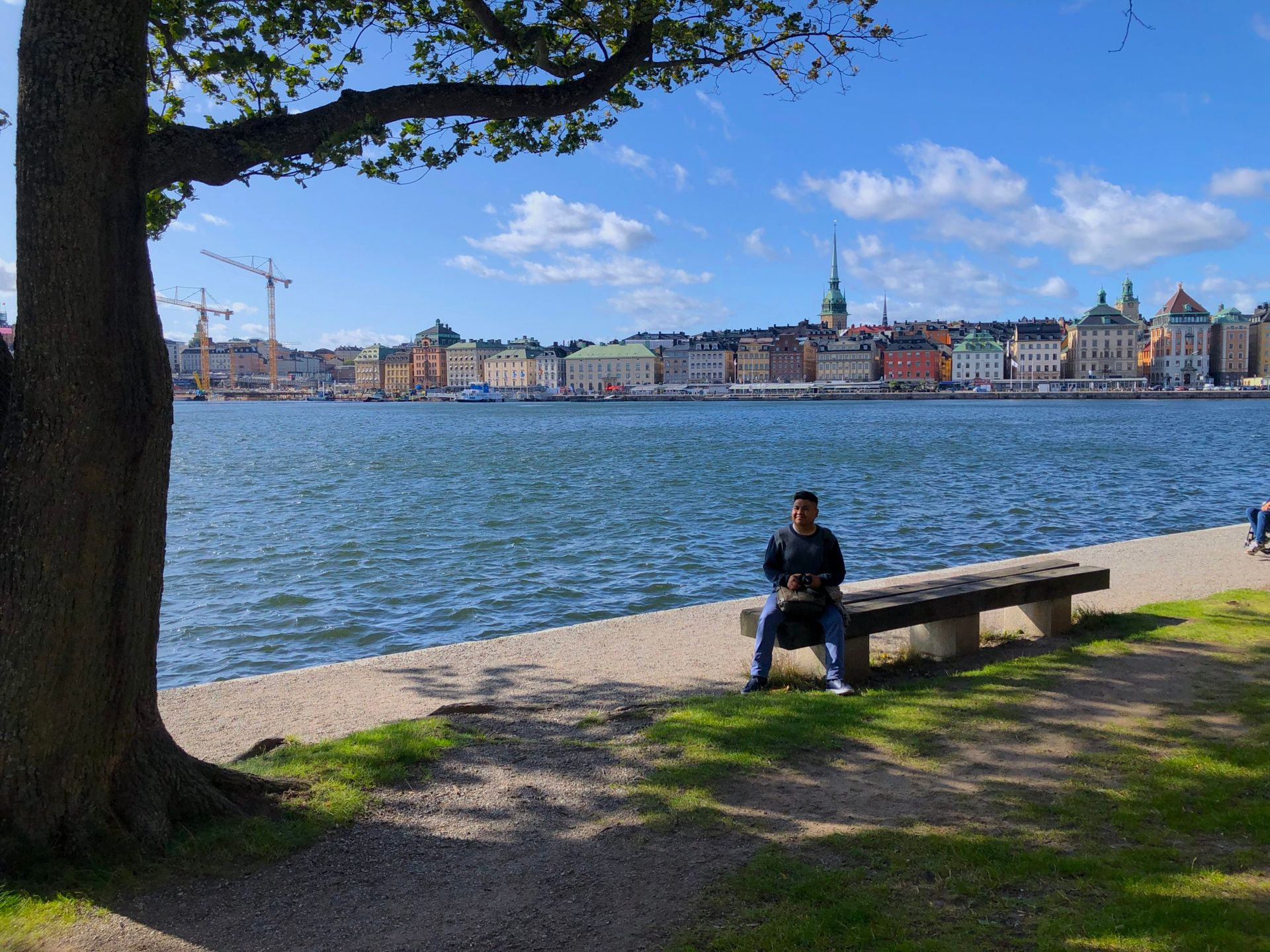 Camilo sits on a park bench under a tree, looking at the view of Stockholm's Old Town.