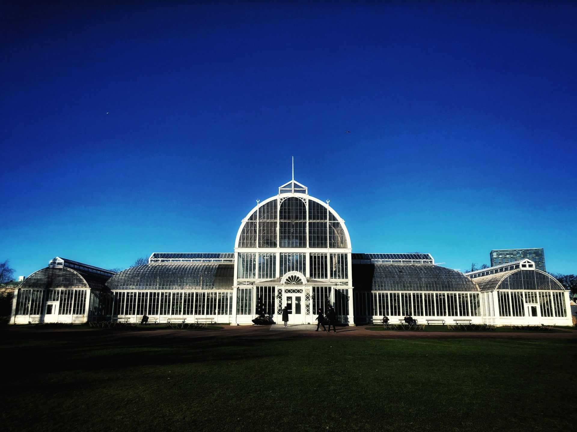 A large greenhouse at night.