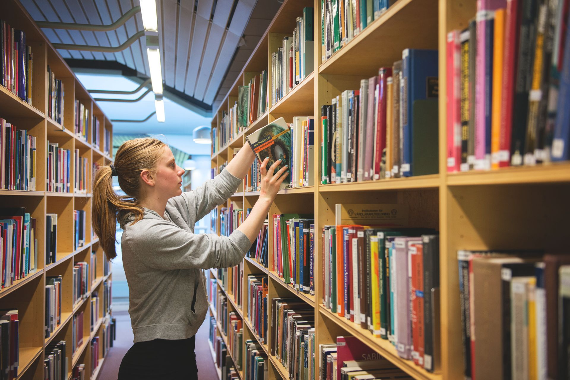 Student in a university library reaching to a high shelf to remove a book.