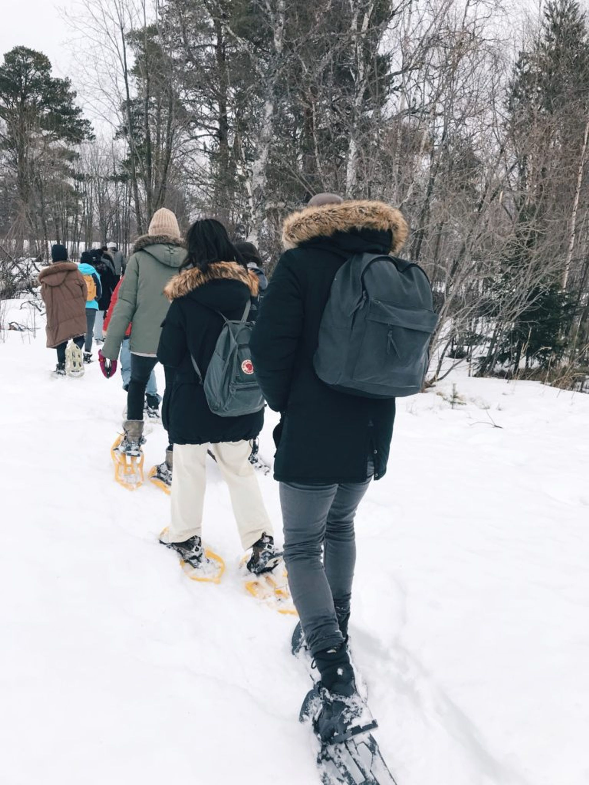 A group of students wearing winter clothing and snowshoes walking in a snowy forrest.