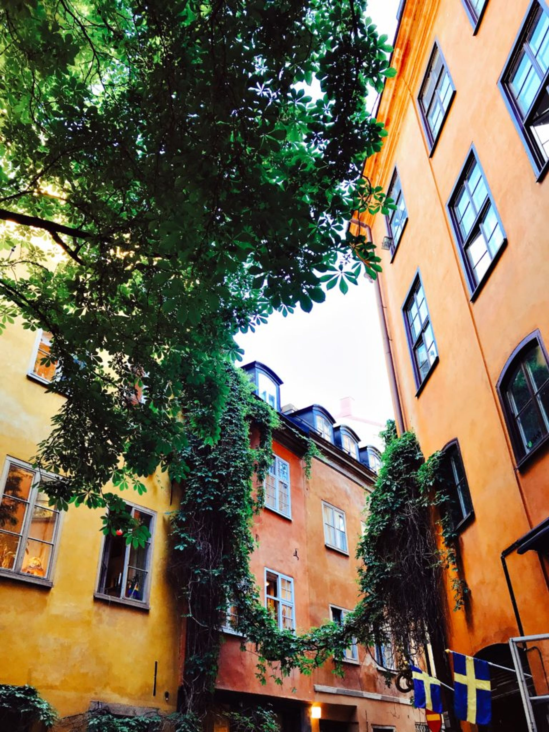 Orange and yellow buildings in Stockholm's Old Town.