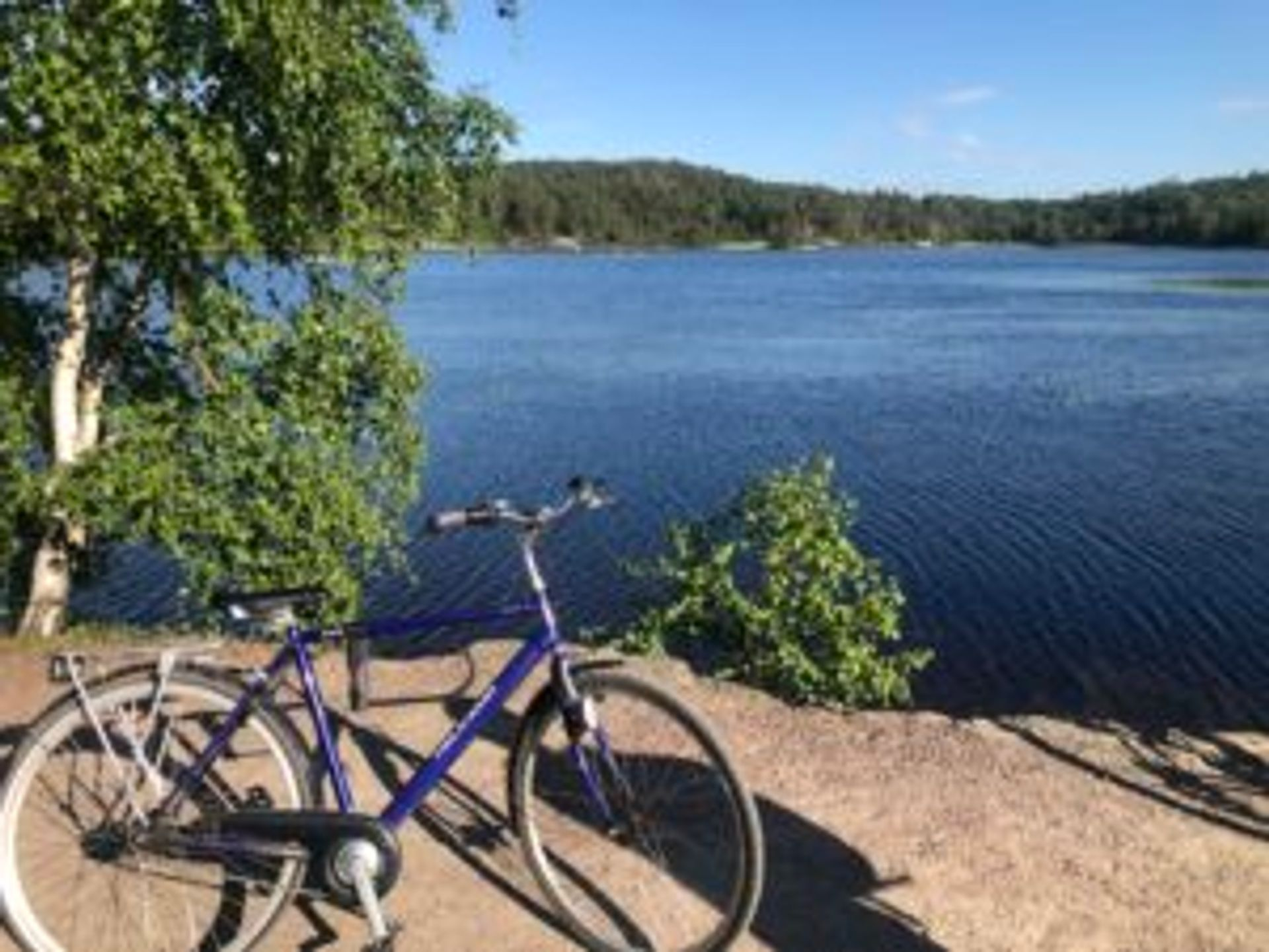 Camilo's blue bicycle in front of a lake.