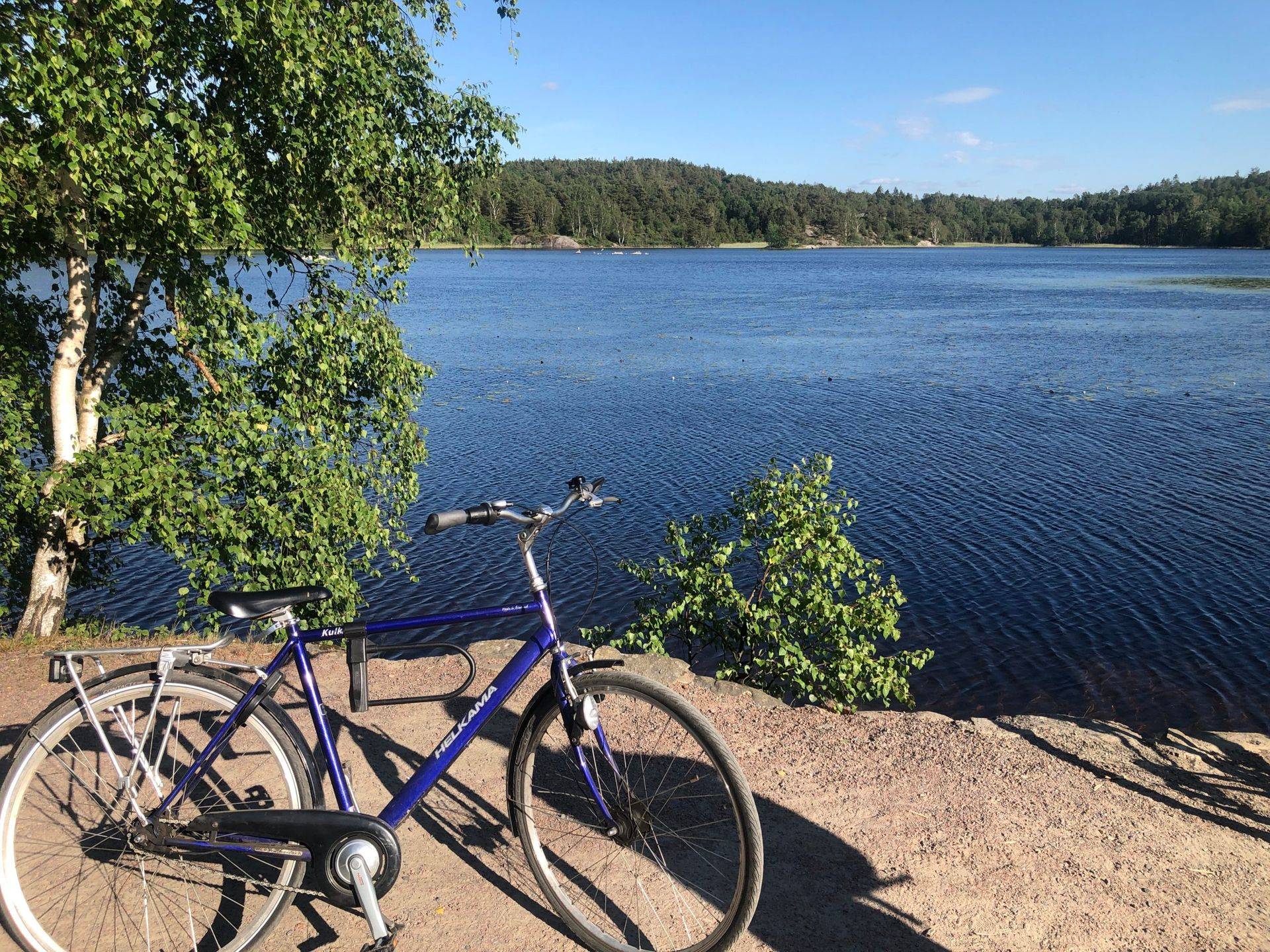 Dark blue bicycle in front of a lake.