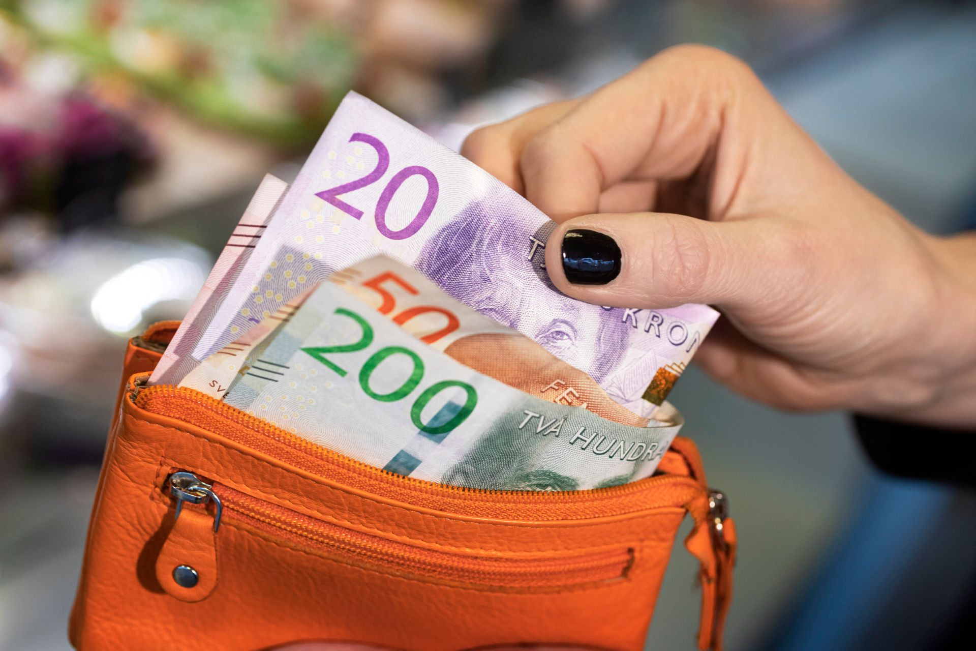 Swedish banknotes are being taken over of an orange purse.