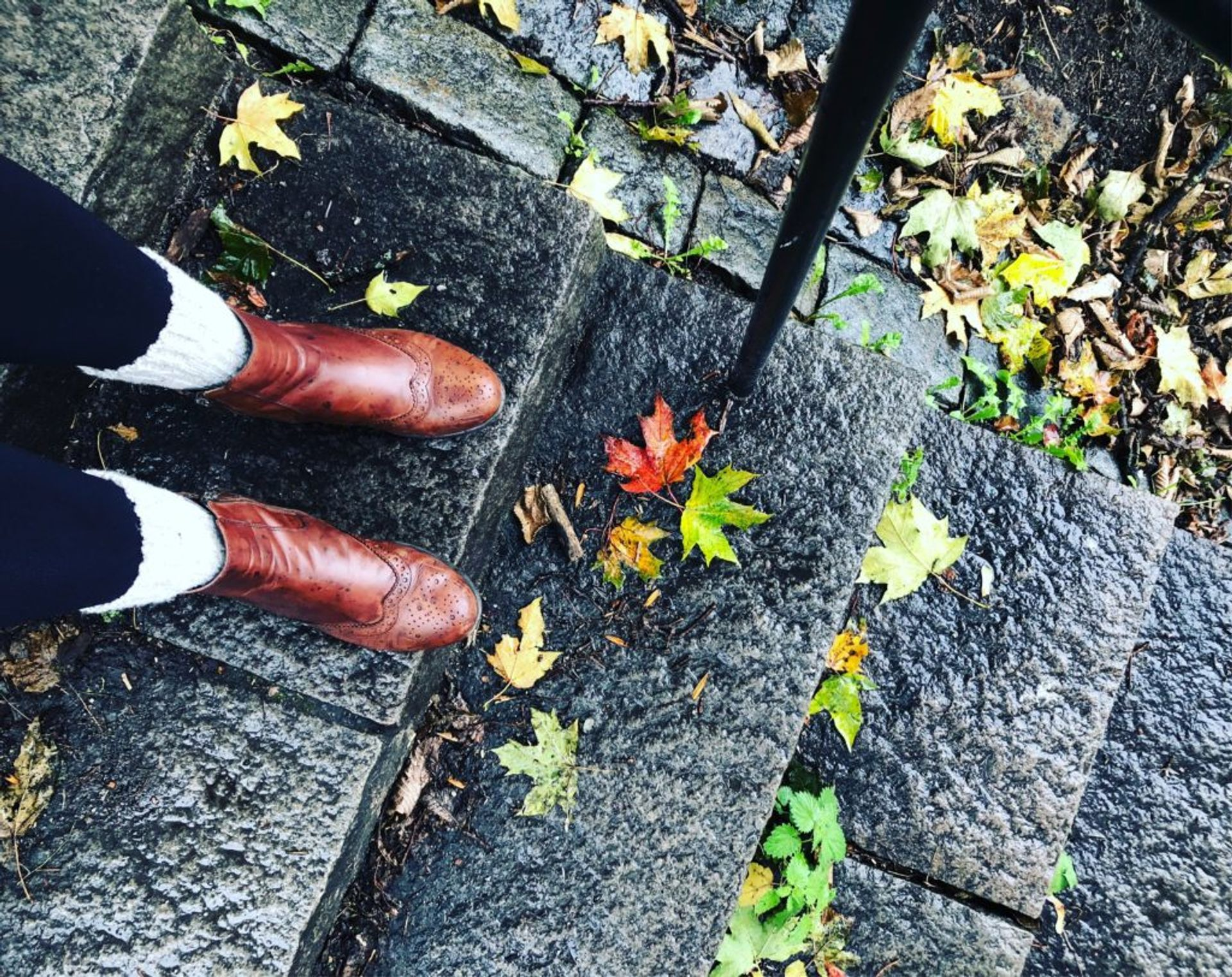 Sara's boots surrounded by fallen leaves on a path.