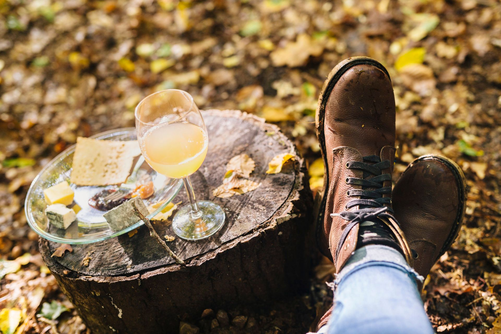 Fall picnic.