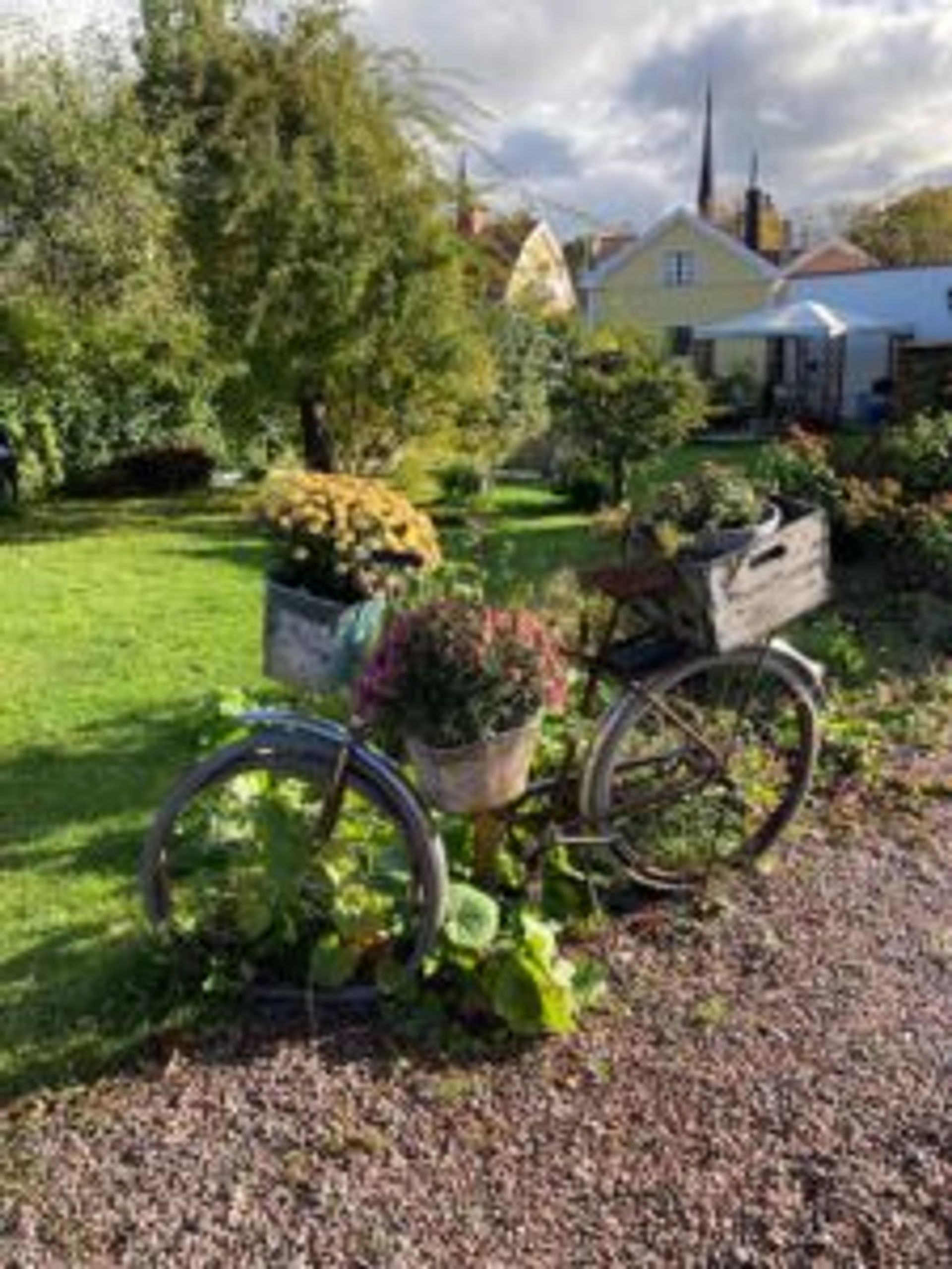 A bicycle used as a decoration in a garden.
