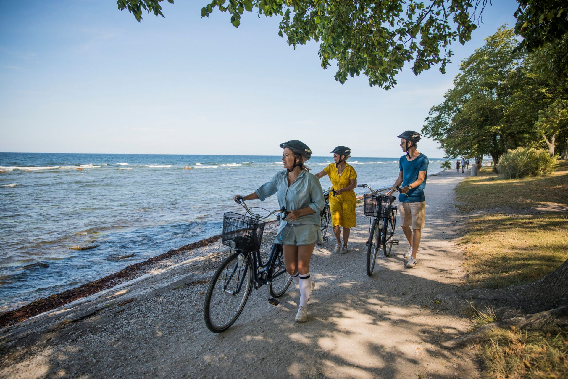 Three people walking along a beach on the island of Gotland with bikes during the summer.