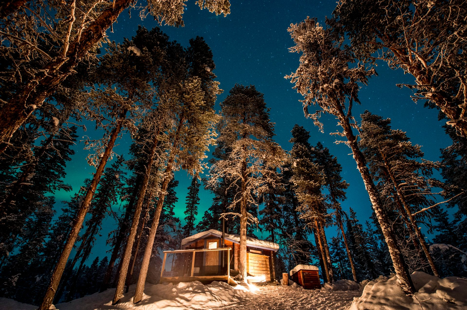 A cabin in a snowy forrest at night.