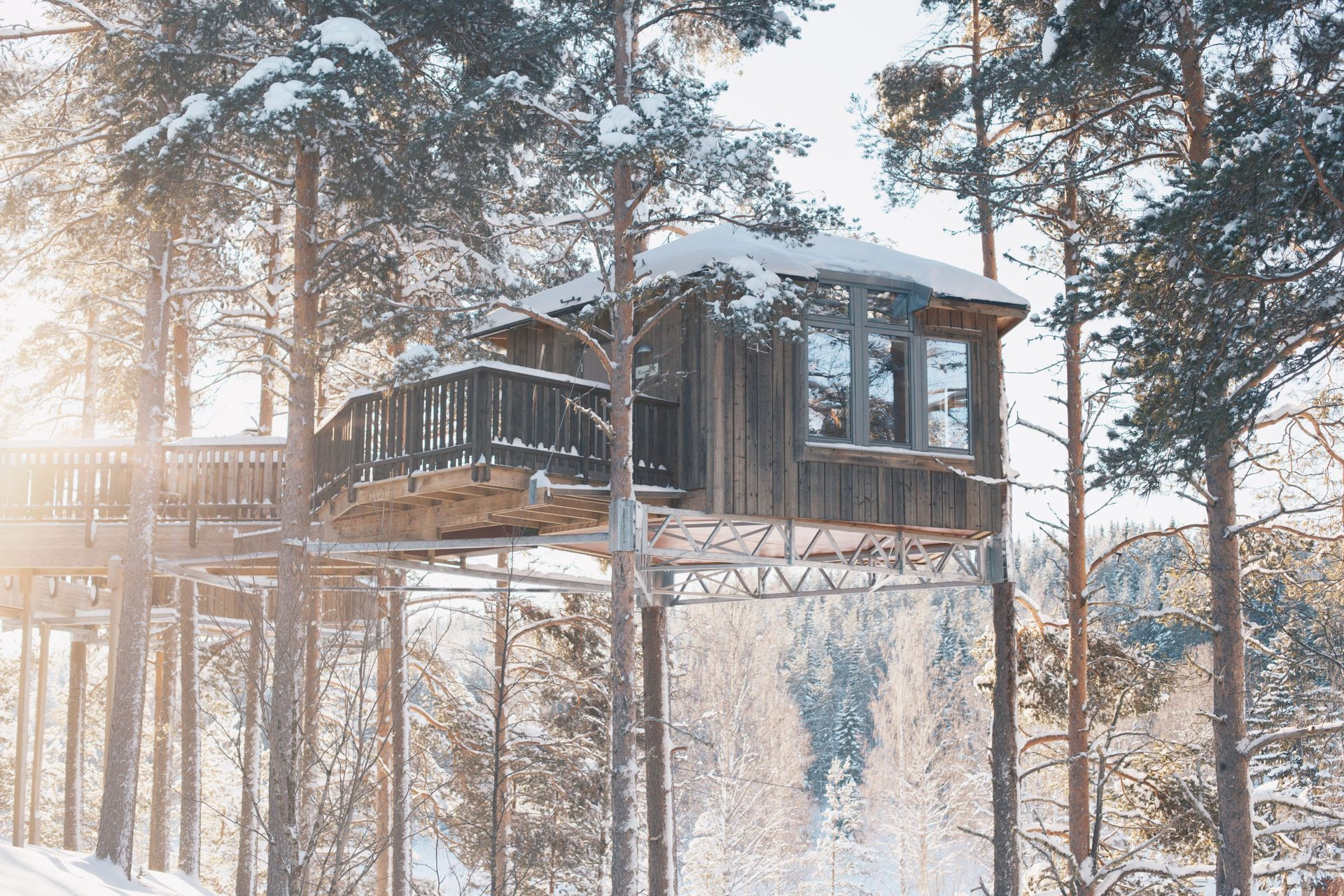 Wooden treehouse structure elevated in a snowy forrest.