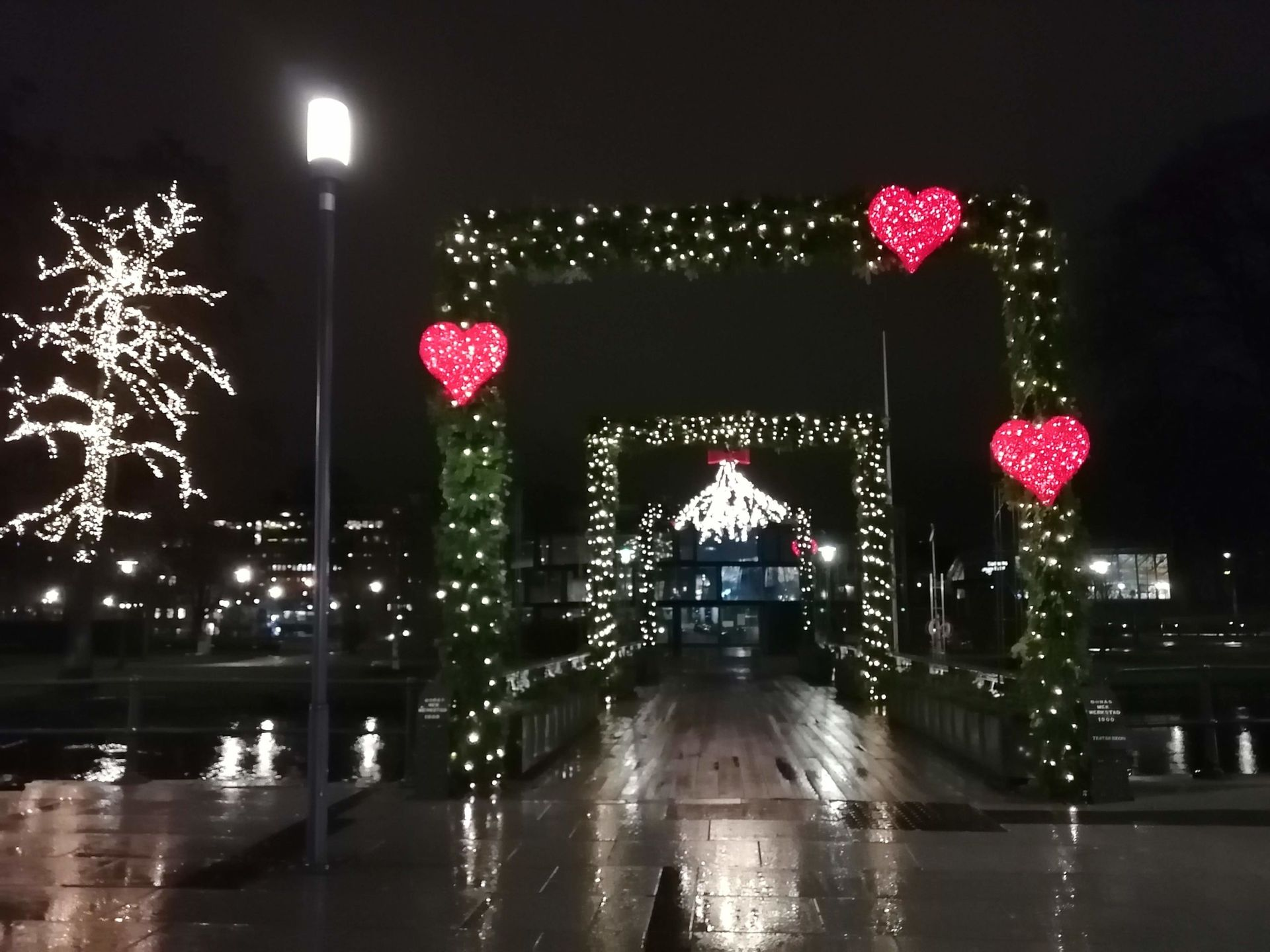 Light display around arched hedges, with bright red hearts and a tree full of lights in the background