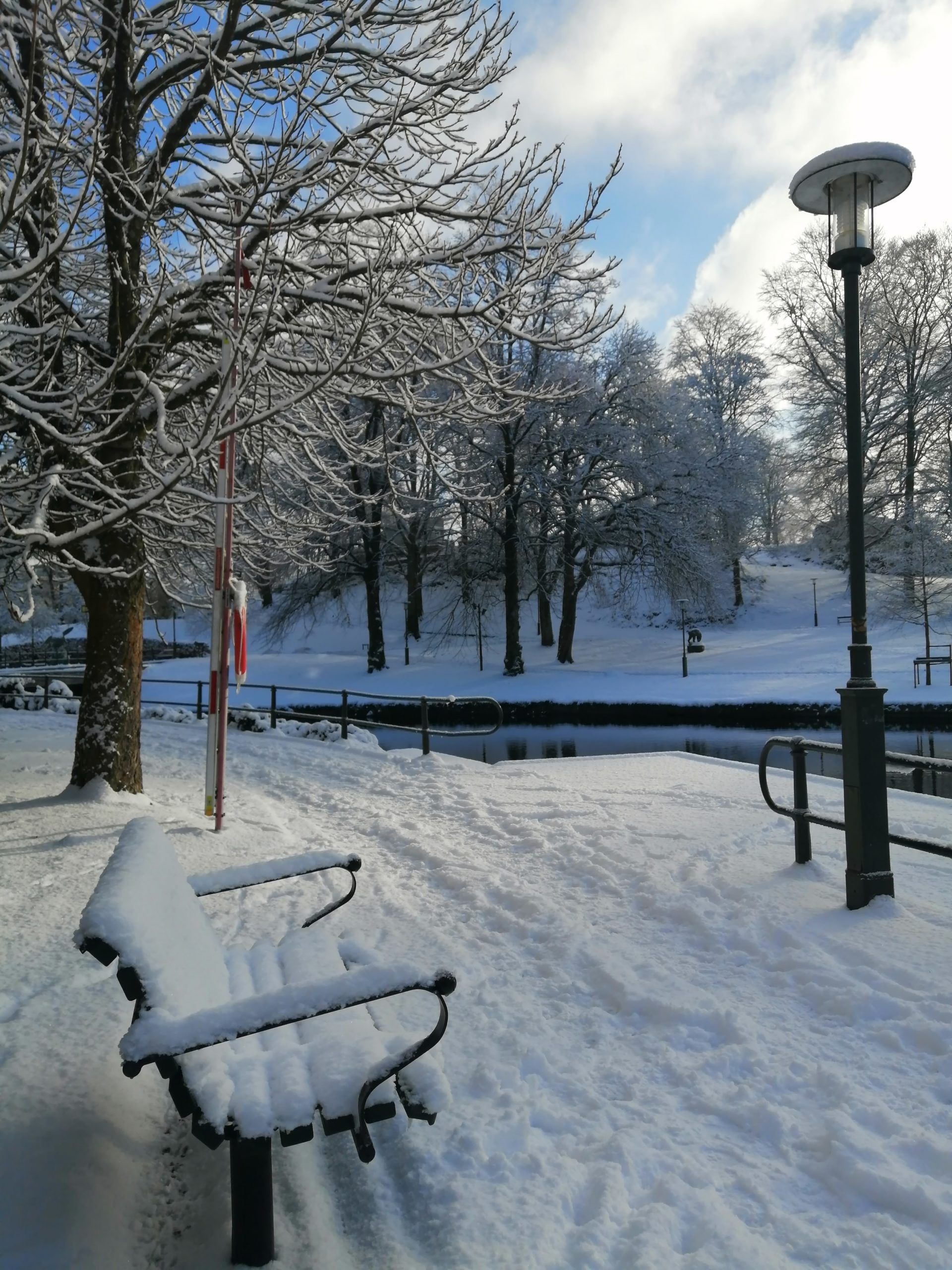 A bench surrounded by trees covered in snow, facing a frozen riverbank