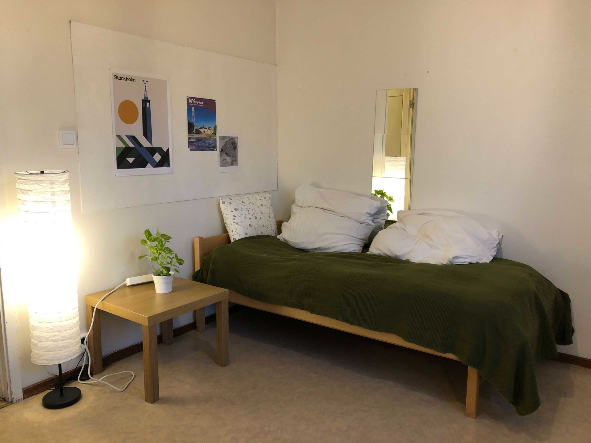 A twin bed with an olive green bedspread and side table with a plant