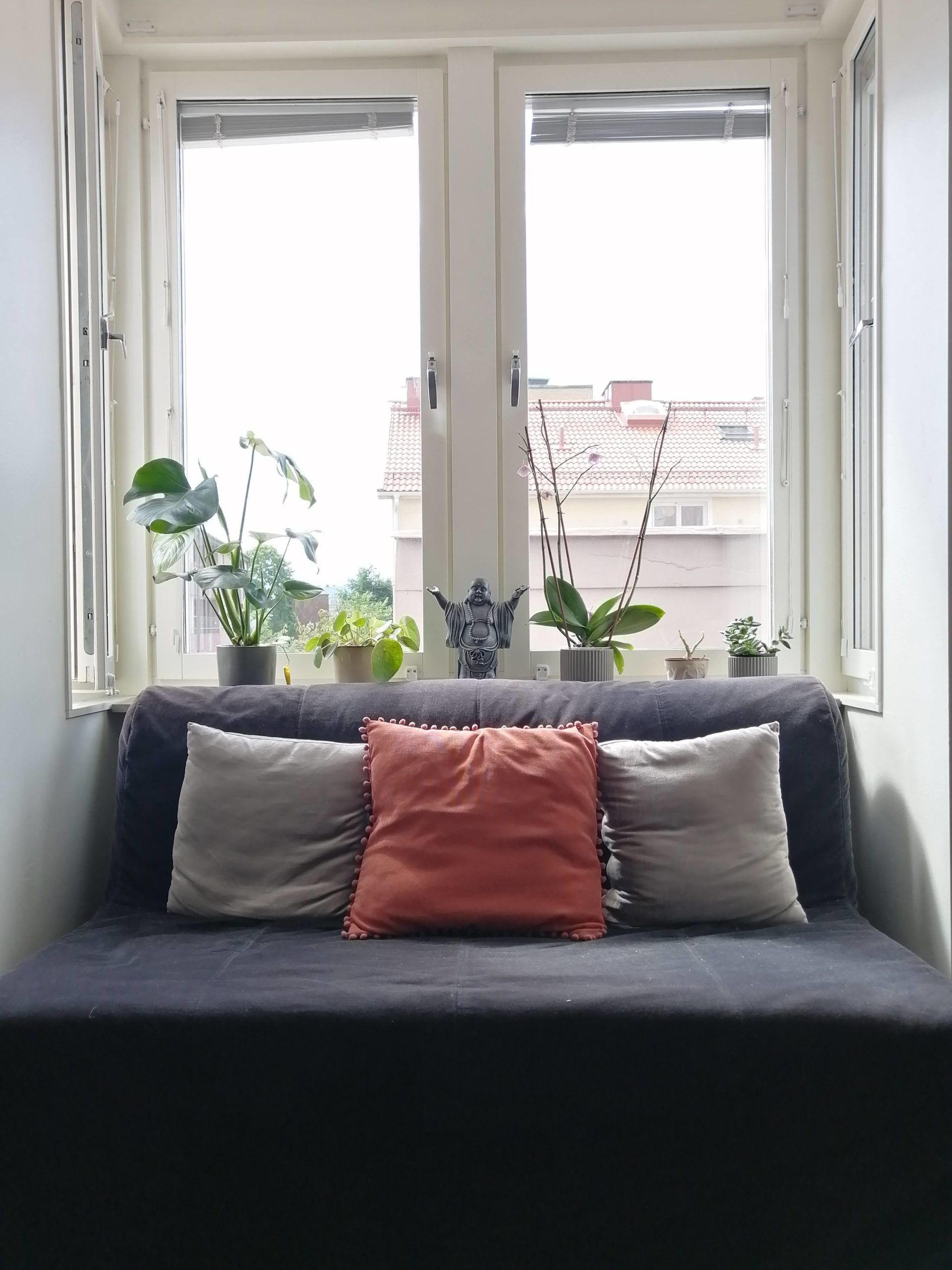 A sofa with cushions and plants on the windowsill behind it